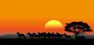 Laufende Herde des natürlichen Hintergrundes lizenzfreie abbildung