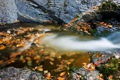 Die Blätter im Wasser im Herbst szenisch stockfotos