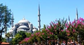 Die blaue Moschee, Istanbul Lizenzfreies Stockbild