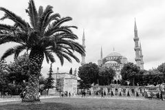 Die blaue Moschee in Istanbul, die Türkei Lizenzfreies Stockfoto