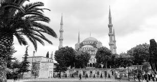 Die blaue Moschee, (Sultanahmet Camii), Istanbul, die Türkei Lizenzfreie Stockfotografie