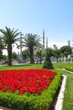 Die blaue Moschee, Sultanahmet Camii, Istanbul, die Türkei Lizenzfreie Stockfotos
