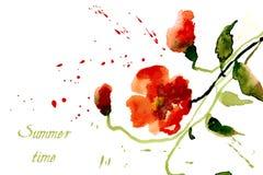 Die Blumen-Mohnblumen, die mit rot sind, spritzt vom Aquarell Stockbild