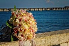 Die Blumenblätter der Liebe Lizenzfreies Stockfoto