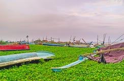 Die Boote im Grün Stockfoto