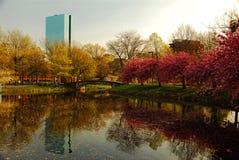 Die Boston-Skyline enrges von der Esplanade Lizenzfreie Stockbilder