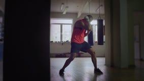 Die Boxer-Züge im Hall stock video