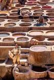 Die bräunenden Bottiche an der Chouara-Gerberei in Fez, Marokko Stockfotos