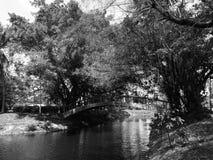Die Brücke über dem Teich Lizenzfreies Stockbild