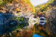 Die Brücke im Herbst szenisch stockfoto