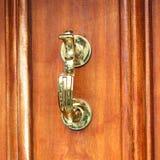 Die braune Tür Stockbilder