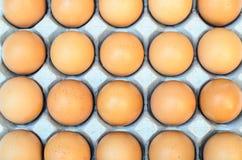 Die braunen Eier im Eikasten Stockfoto