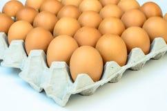 Die braunen Eier im Eikasten Lizenzfreie Stockbilder
