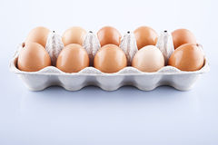 Die braunen Eier im Eikasten Stockfotografie