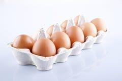 Die braunen Eier im Eikasten Lizenzfreies Stockfoto