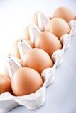 Die braunen Eier im Eikasten Stockbild