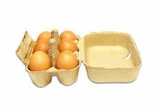Die braunen Eier im Eikasten Stockbilder