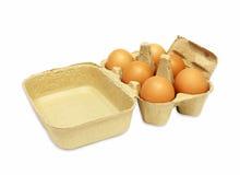 Die braunen Eier im Eikasten Lizenzfreies Stockbild