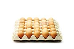 Die braunen Eier lokalisiert auf Weiß Stockfotos