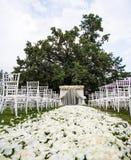 Die Braut mit einer Blume Stockbilder