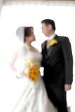 Die Braut u. der Bräutigam Lizenzfreies Stockfoto