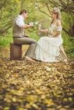 Die Braut und der Bräutigam in einer rustikalen Art, die am Herbstwald, Getränkrebe von den Gläsern sitzt Stockfoto