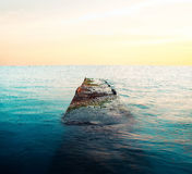 Die Braut unter Wasser Stockfotos