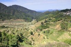 Die breiten ordentlichen Terrassen unter huangling Berg, luftgetrockneter Ziegelstein rgb stockfoto