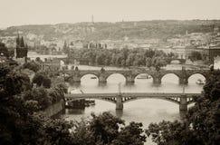 Die brigdes von Prag Stockbild