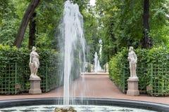 Die Brunnen des Sommergartens Heiliges Peteburg Stockfoto