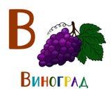 Die Buchstaben des russischen Alphabetes Beschriften der modernen Kalligraphieart Stockbild