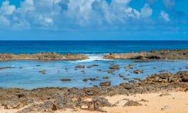 Die Bucht-Gezeiten-Pools des Haifischs Stockfoto