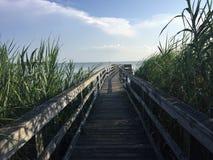 Die Bucht im North Carolina lizenzfreies stockfoto