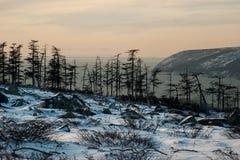 Die Bucht von Nagaev Stockbilder