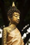 Die Buddha-Statue im thailändischen Tempel Lizenzfreies Stockbild