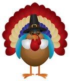 Die bunte Türkei mit Pilger-Hut-Illustration Stockbilder