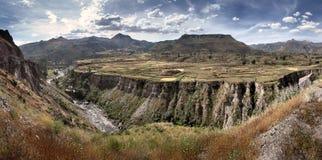 Die Colca-Schlucht in Peru - Ansicht von terassenförmig angelegten Feldern und von Colca-Fluss Stockbild