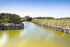 Die Comacchio-Täler (Italien) Lizenzfreies Stockbild