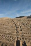 die Dünen Stockbilder