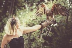 Die Dame mit dem Harris-Falken Stockfotos