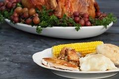 Die Danksagungs-Türkei-Abendessen Lizenzfreie Stockbilder
