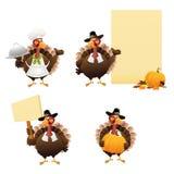 Die Danksagungs-Türkei-Set lizenzfreie abbildung