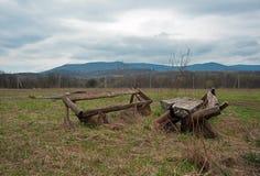 Die defekte bewaldete Bank und die Tabelle an der Wiese Stockfotografie