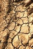 Die desertic Zone in der Navarra Spanischregion Stockfotografie