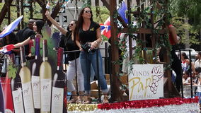 Die 2014 Dominikaner-Tagesparade in Manhattan 10 Stockfotos