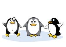 Drei Arten Pinguine Stockfotos