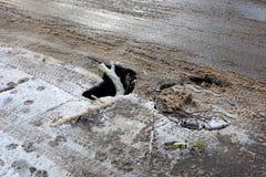 Die Drohung eines Unfalles auf der Straße wegen der schlechten Zustandes der Asphaltstraße Lizenzfreie Stockfotos