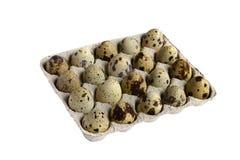 Die Eier der Wachteln Lizenzfreies Stockfoto