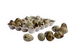 Die Eier der Wachteln Lizenzfreie Stockfotografie
