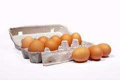 Die Eier des Huhns in der grauen Farbe des Kastens auf weißem Hintergrund Stockfotografie